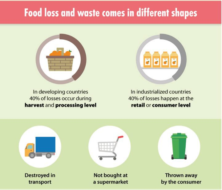 food_waste_infographic