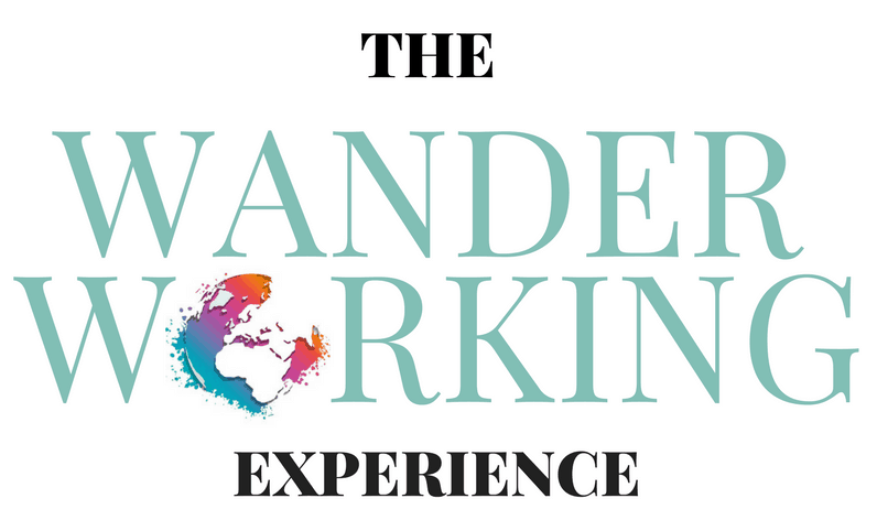 Wander Working Experience_socent1