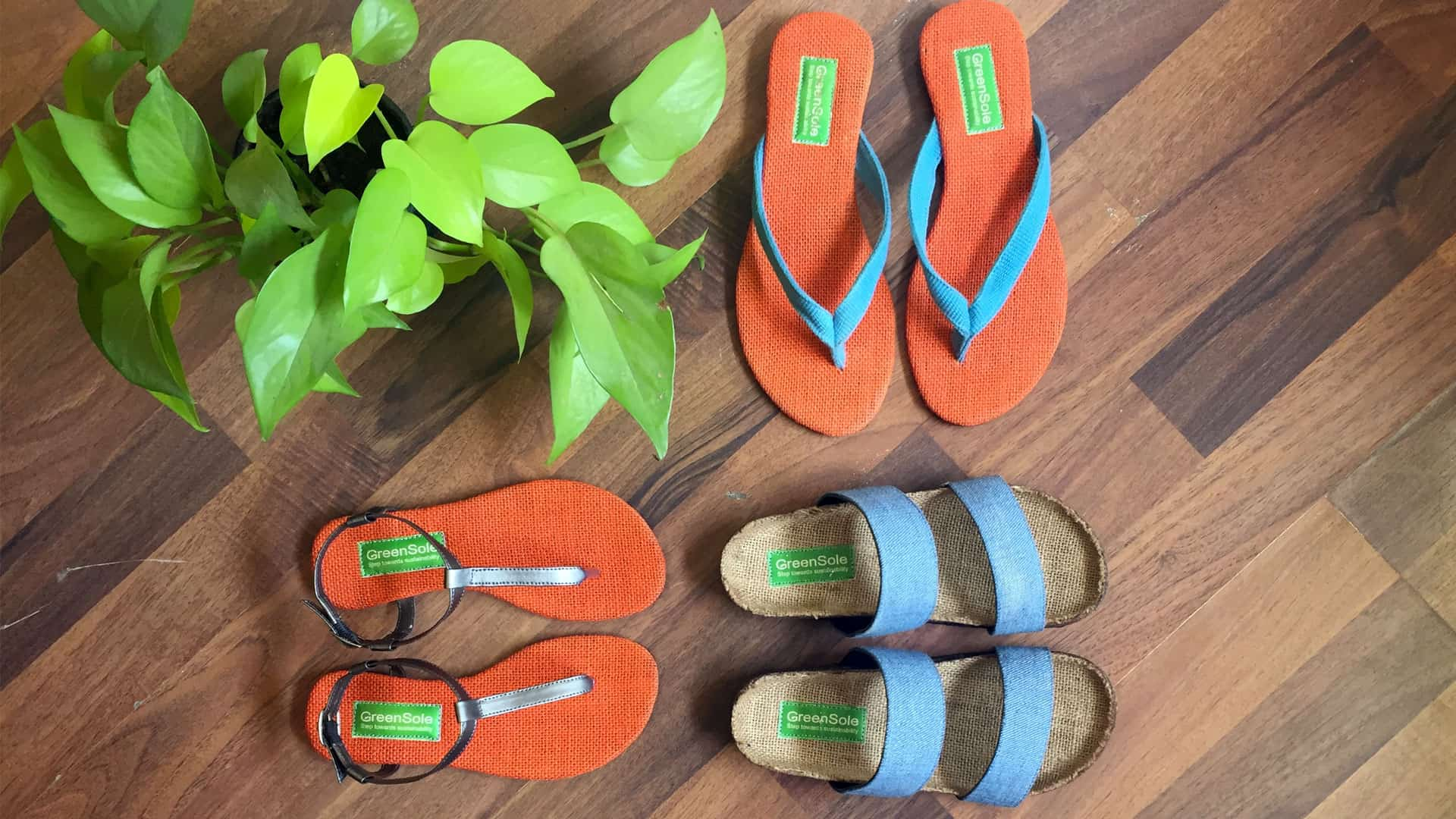 Greensole_SLIPPERS
