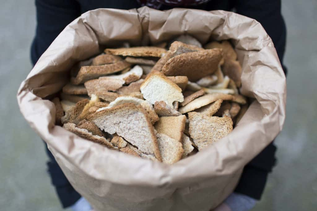 Toast Ale Brews Beer From Leftover Bread to Tackle Food Waste