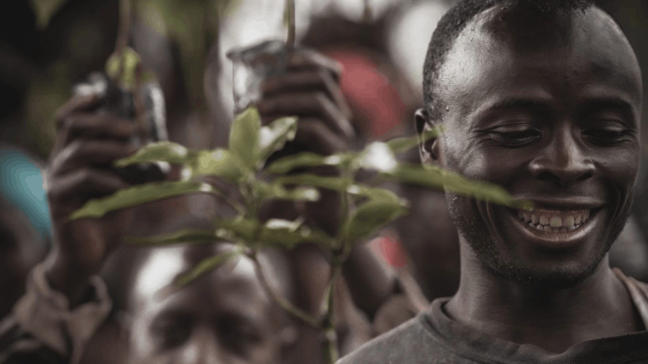 Meet the First-Ever Food Forest in Rwanda and Impact it Creates