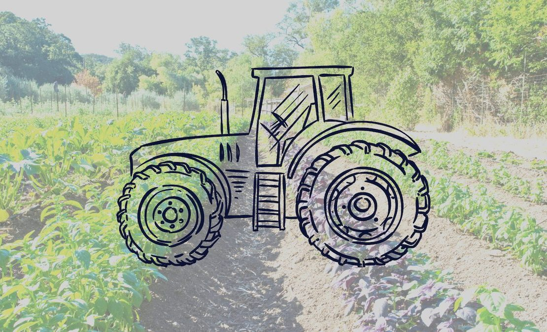 Meet Steward, the Innovative Online Lending Platform Helping Fund the Growth of Regenerative Agriculture
